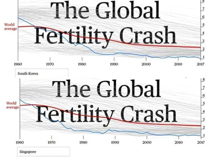 Thế giới báo động về suy giảm sinh đẻ -3