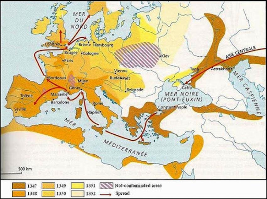 Trận đại dịch đen vào thế kỷ 14 -6