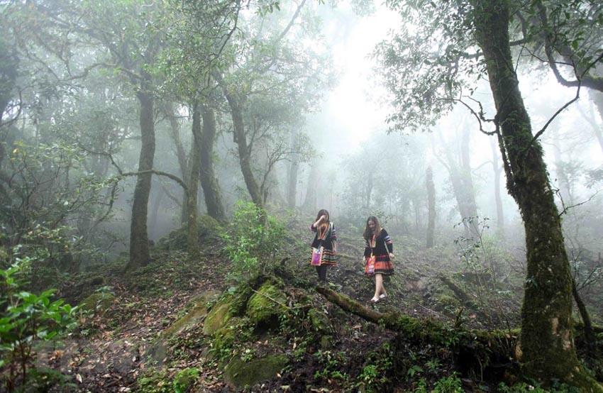 Trekking – Phong cách du lịch thú vị cho những ai thích chinh phục -11