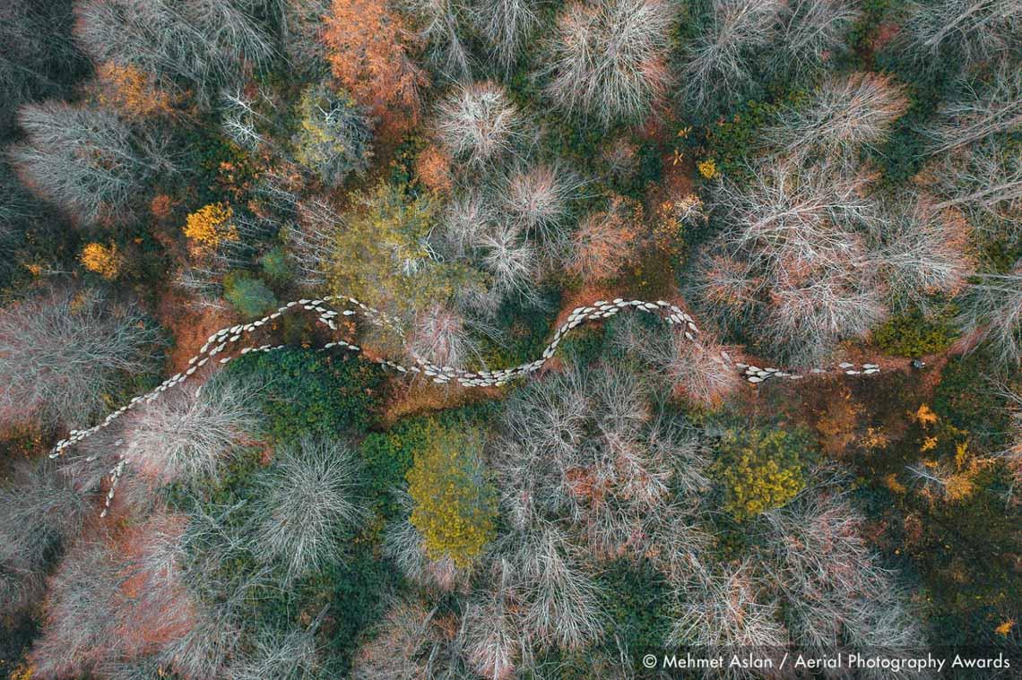 Những bức ảnh ấn tượng đoạt giải trong cuộc thi Nhiếp ảnh Trên không lần thứ nhất -12