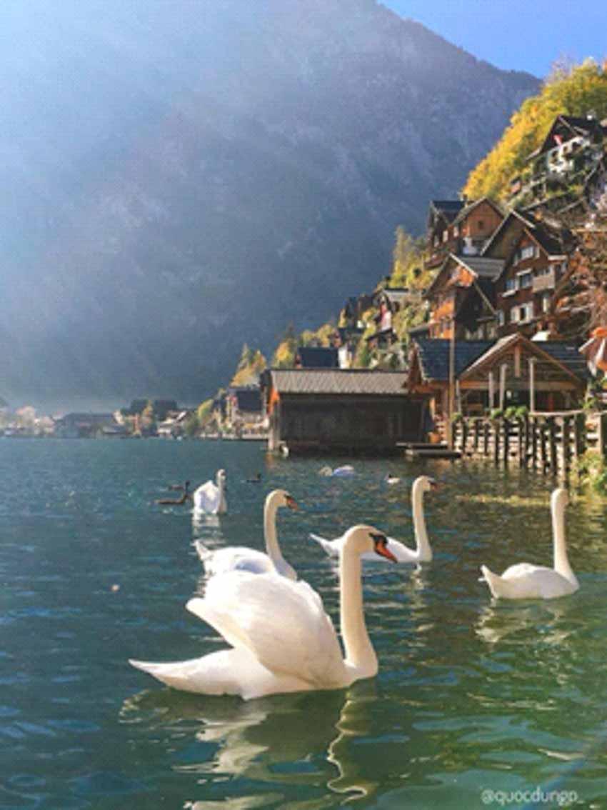 Hallstatt - Ngôi làng cổ tích ở châu Âu -10