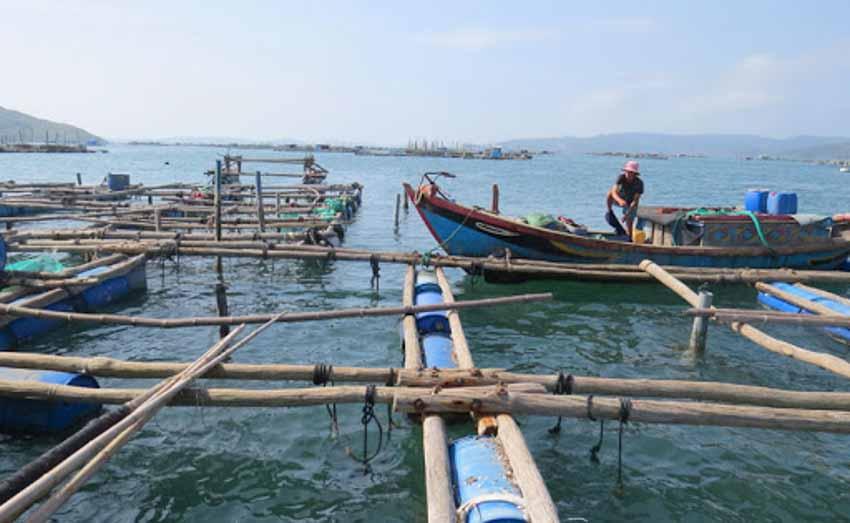 Rong ruổi bờ biển Phú Yên -1