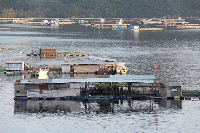 Rong ruổi bờ biển Phú Yên -2