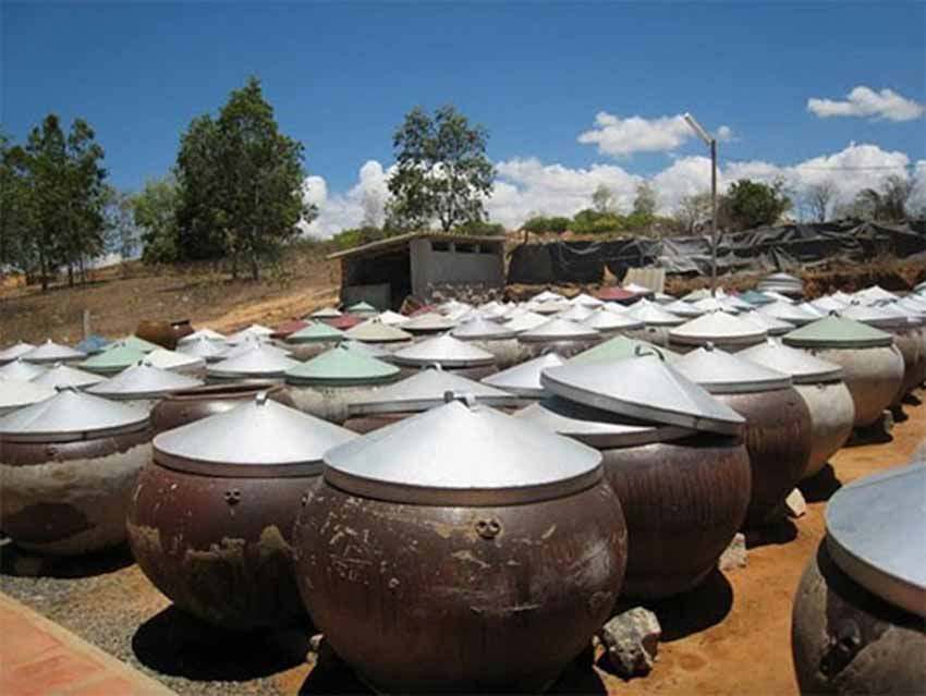 Làng nghề nước mắm ở phan thiết -3