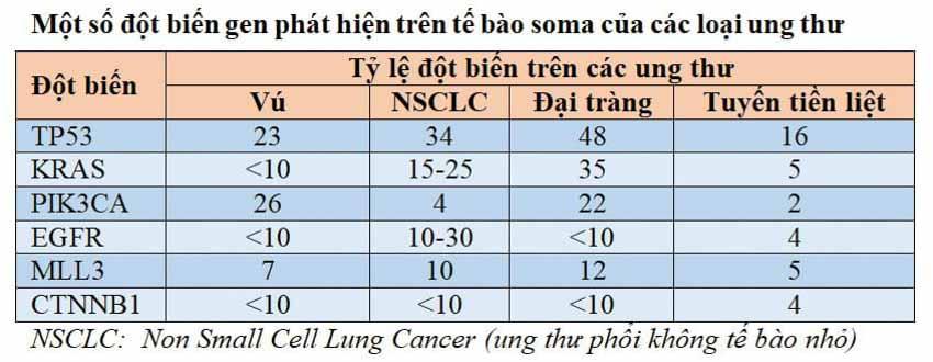 Ung thư, hiểm họa từ đâu đến? - Kỳ 1 -3