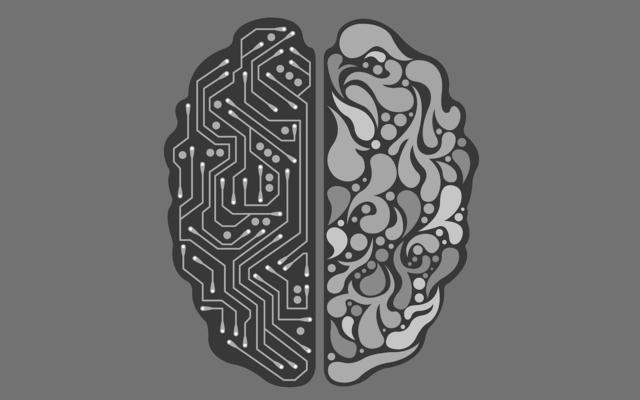12 thiên kiến nhận thức làm lu mờ lý trí của bạn - 3