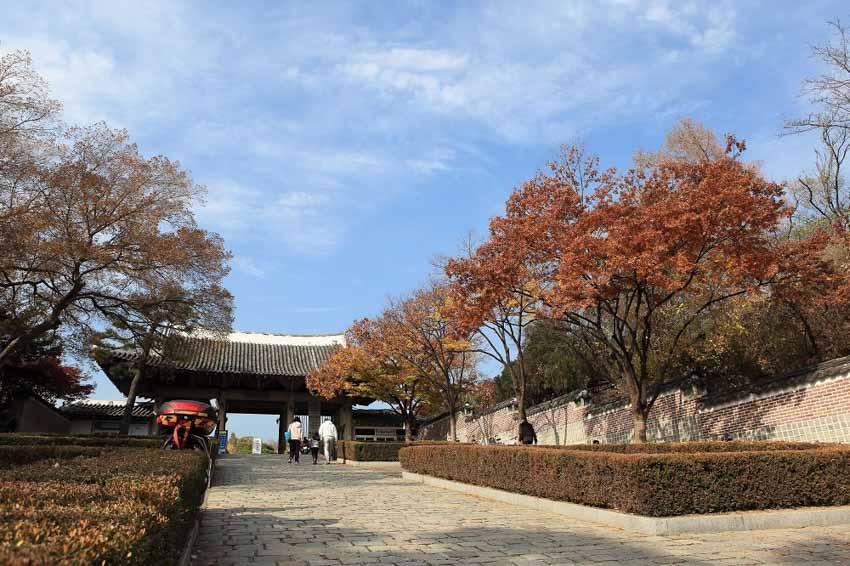 Du lịch Hallyu: Theo chân BTS khám phá Daegu trong một ngày -5