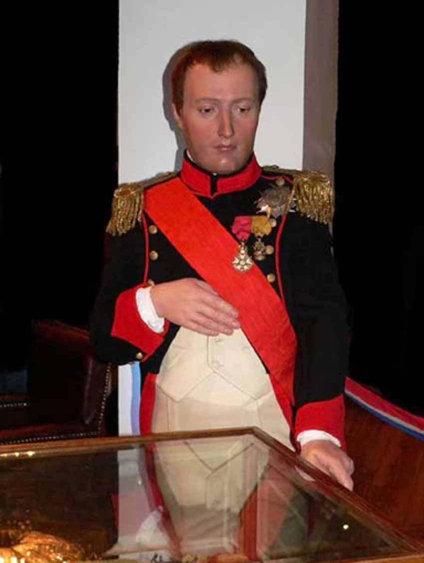 Phải chăng Napoléon bị đầu độc? - 3