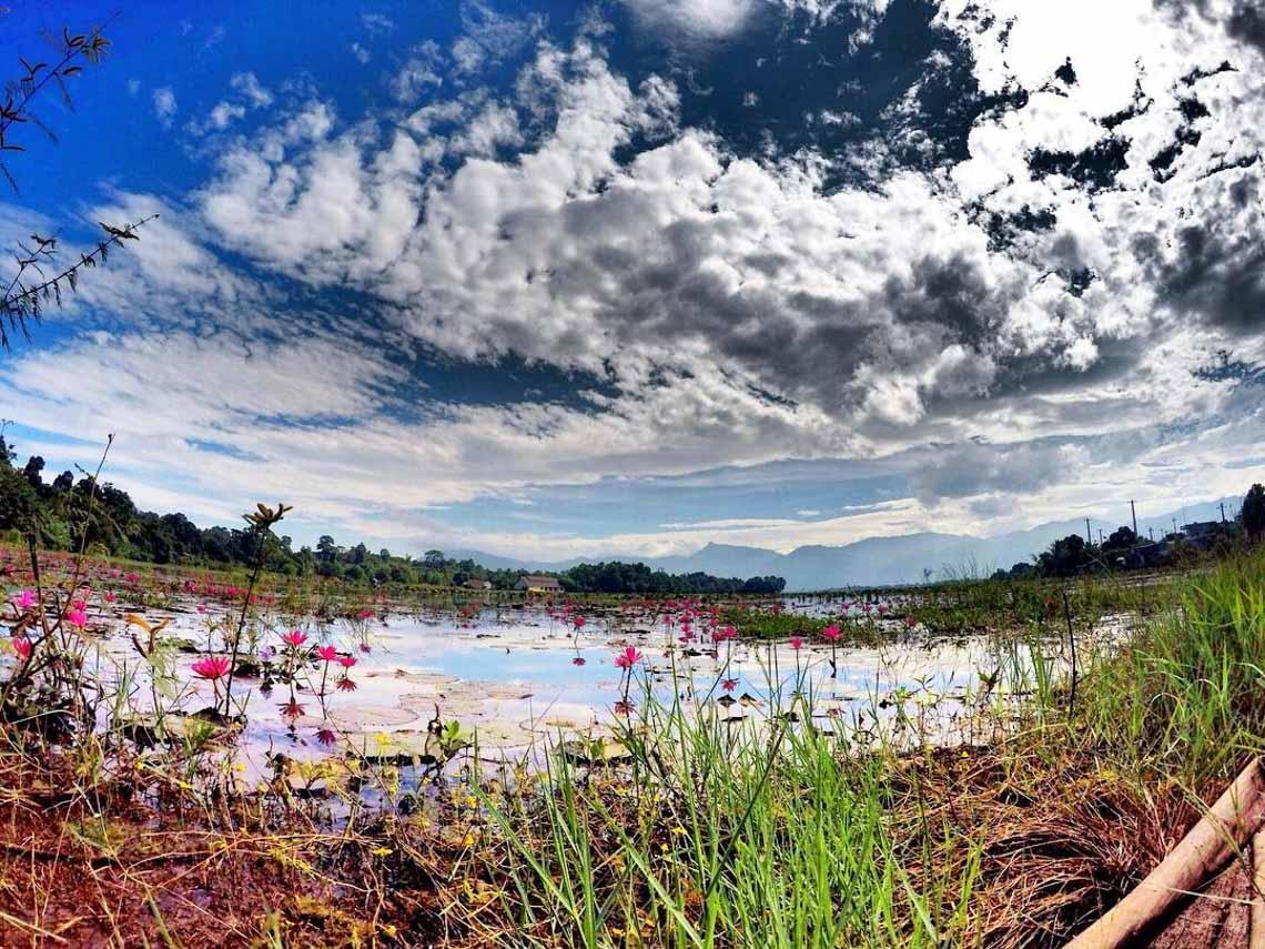 Hồ Lăk – dải lụa óng mềm của đất rừng Tây Nguyên - 3