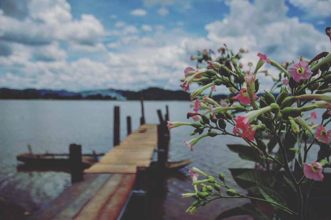 Hồ Lăk – dải lụa óng mềm của đất rừng Tây Nguyên - 14