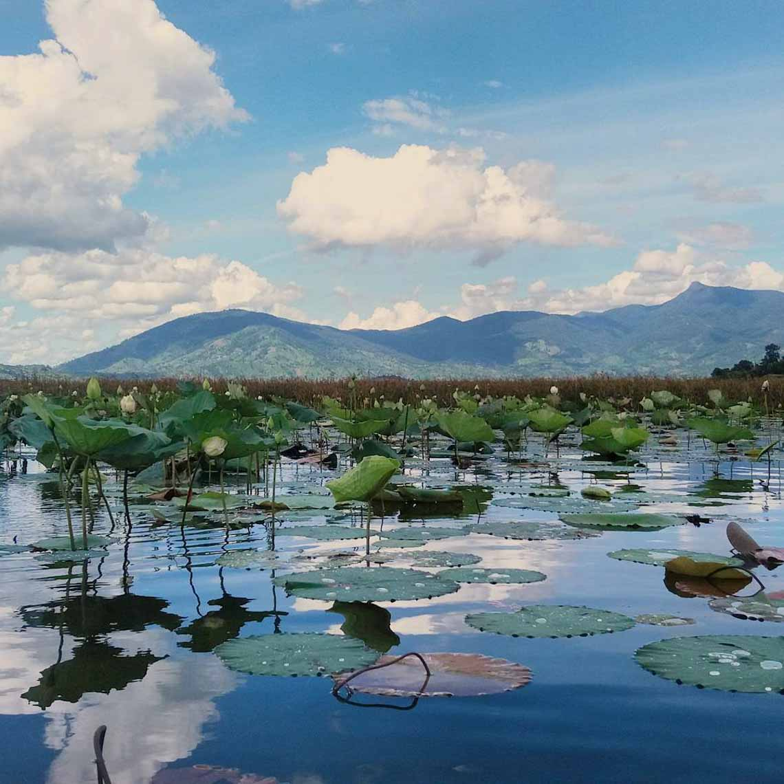 Hồ Lăk – dải lụa óng mềm của đất rừng Tây Nguyên - 20