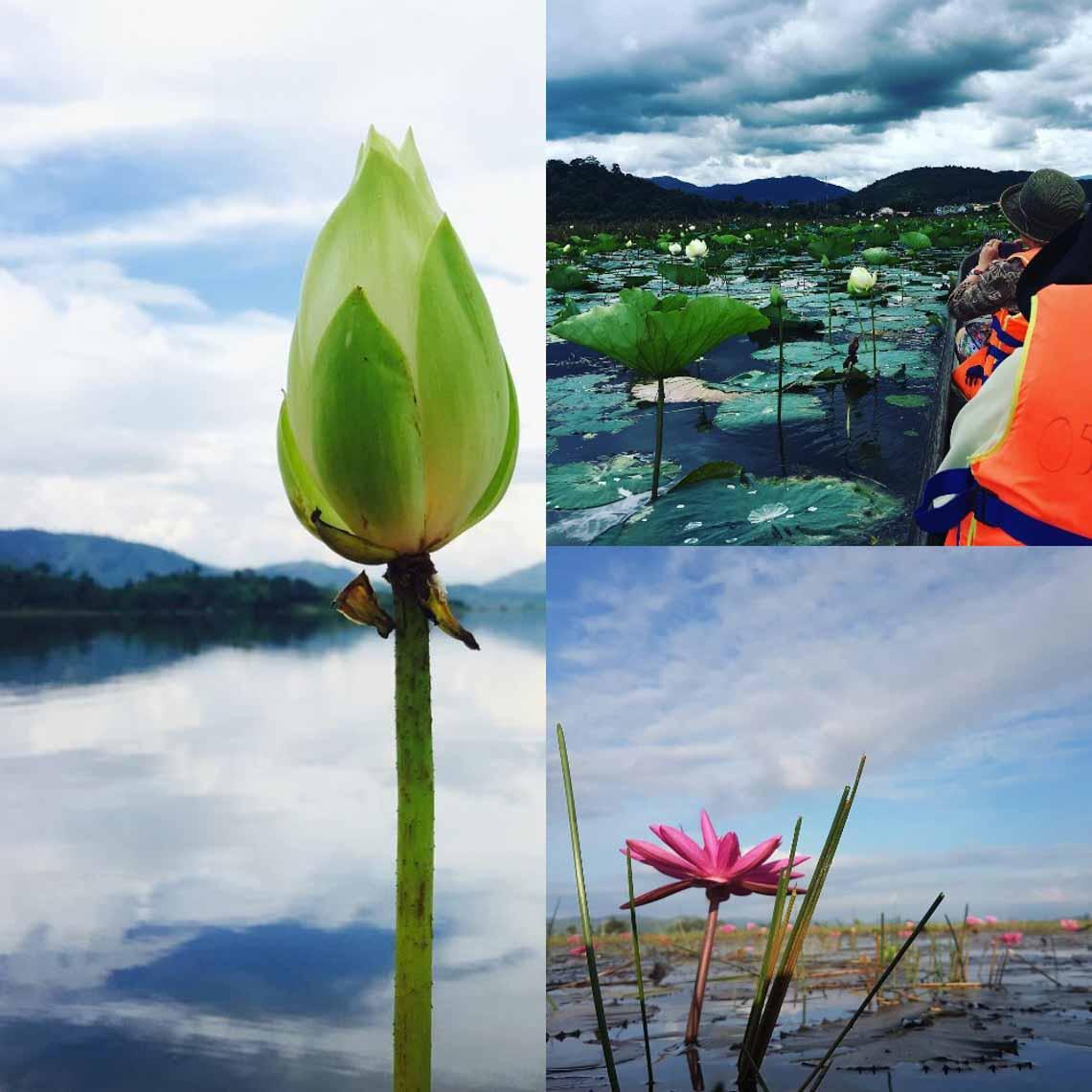 Hồ Lăk – dải lụa óng mềm của đất rừng Tây Nguyên - 24