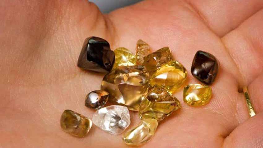 Muốn làm giàu hãy đến Arkannas để nhặt kim cương - 8