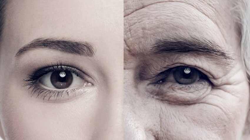 Tranh cãi về giới hạn của tuổi thọ con người - 1