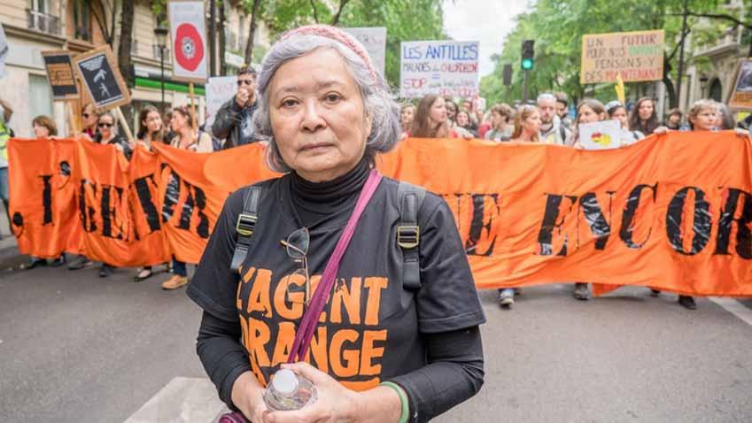 Bà Trần Tố Nga và phiên tòa lịch sử: Tôi hoàn toàn không đơn độc - 2
