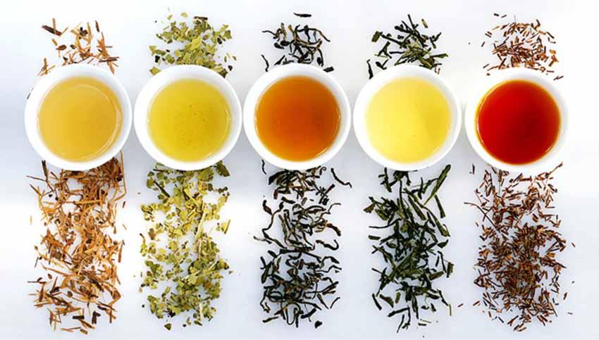 Thưởng thức trà để cải thiện tâm trạng và sức khỏe - 3