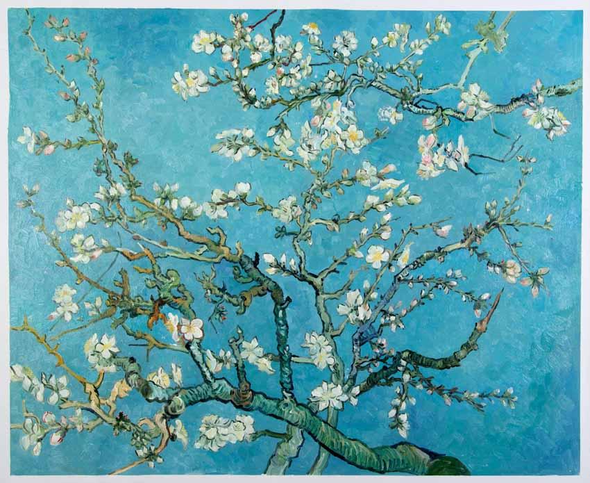 Những bức tranh mang hơi thở mùa xuân - 17