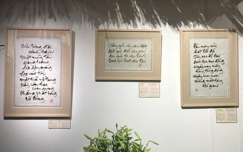 Triển lãm thư pháp và sách Hương thơm quê mẹ của Thiền sư Thích Nhất Hạnh - 2