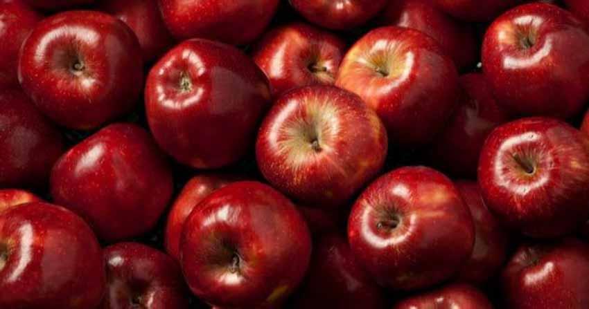 Giai thoại thú vị về các trái cây - 7