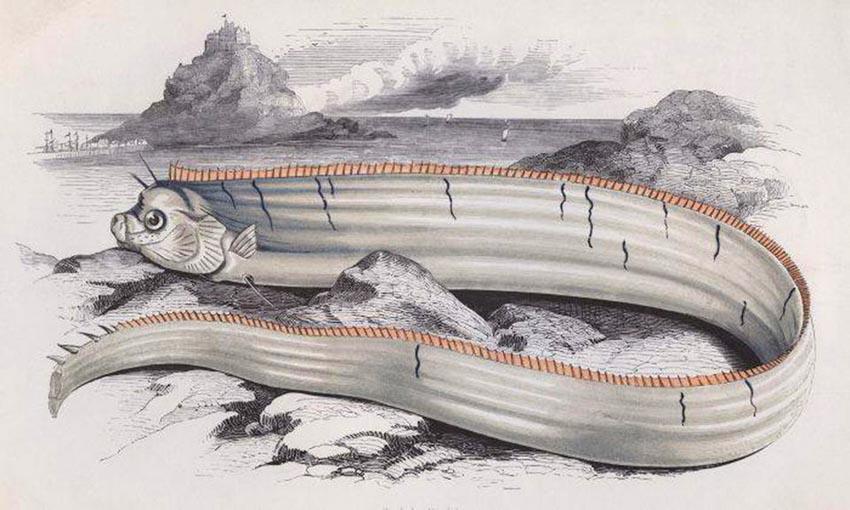 Ly kỳ nguyên cớ địa chấn thời cổ đại - 1