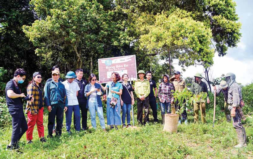 Đỗ Thị Thanh Huyền: Câu chuyện trồng rừng và truyền cảm hứng kết nối - 4