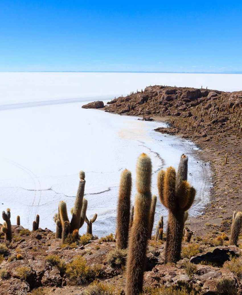 Salar, vương quốc muối lớn nhất thế giới - 3