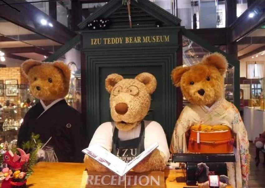 Bí mật của Tổng thống Mỹ Roosevelt và lý do Bảo tàng Gấu Teddy hấp dẫn toàn cầu - 3