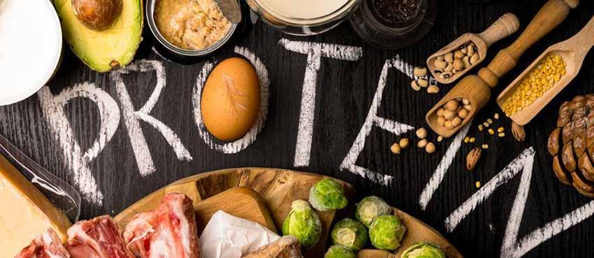 Thiếu protein có thể gây suy yếu hệ miễn dịch - 2