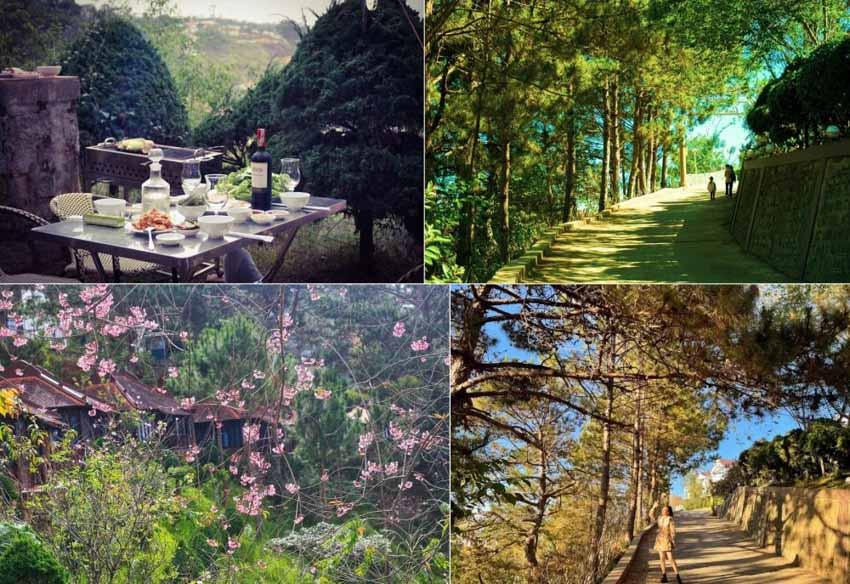 6 khách sạn đẹp ở Đà Lạt níu chân du khách thập phương - 20