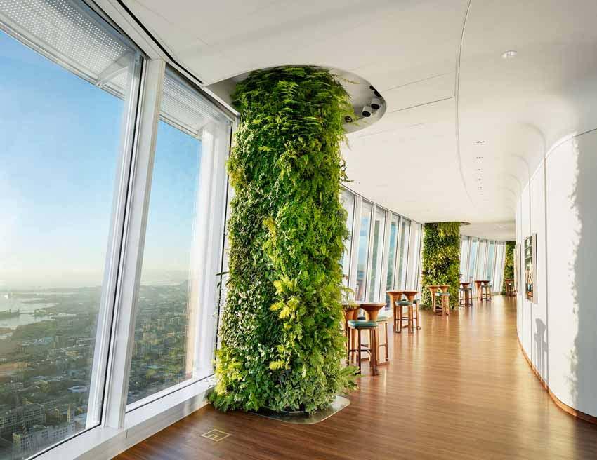 Khu vườn xanh quyến rũ trên những chiếc cột của tòa nhà văn phòng - 4