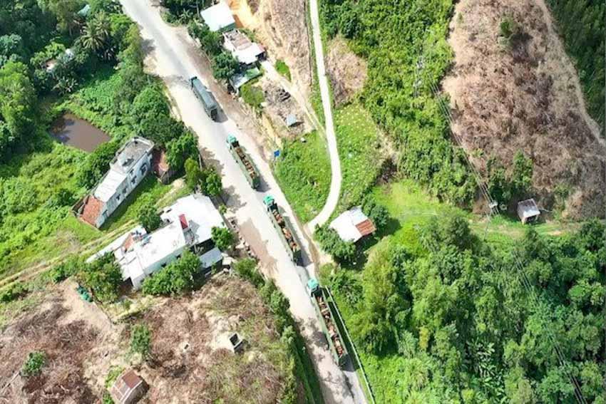 Logistics trọn gói cho nông nghiệp - THILOGI góp phần mang nông sản Việt ra thế giới - 2