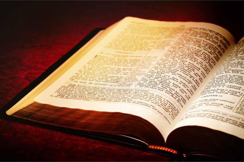 Thế giới sách: Những kỷ lục đáng nể ít người biết - 2