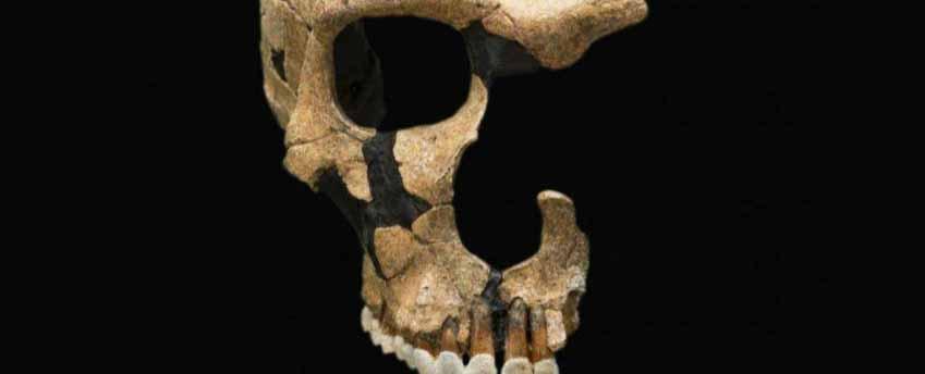 Những điều thú vị về người cổ đại mà bạn không biết - 3