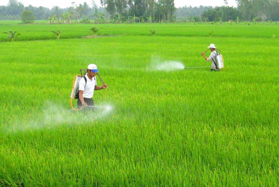 Suy ngẫm: Người nông dân thông minh - 1
