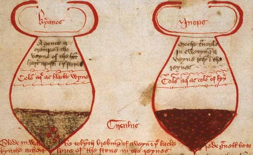 Những biện pháp y học kỳ lạ thời Trung cổ - 2