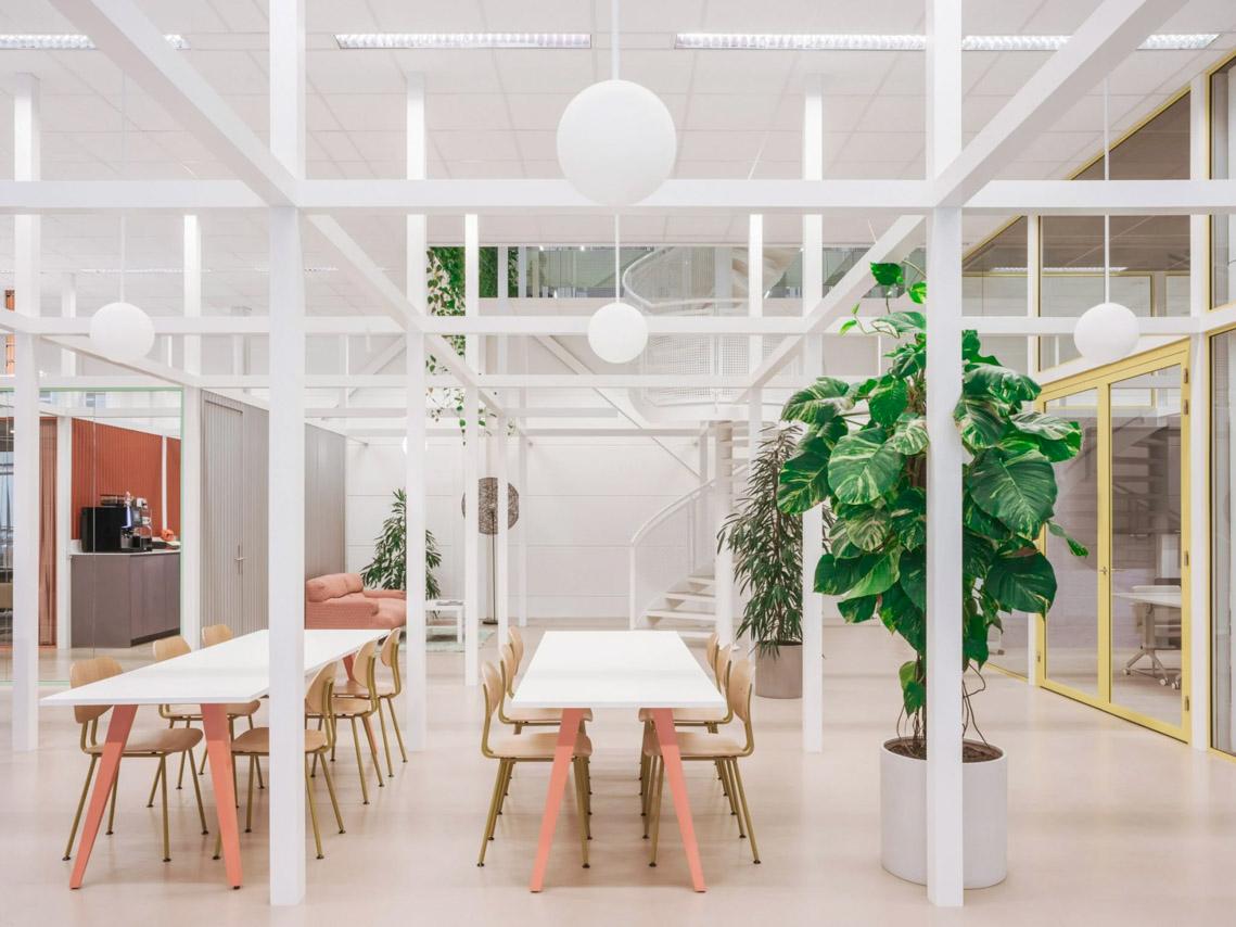 Khám phá mười nội thất văn phòng không gian xanh - 4