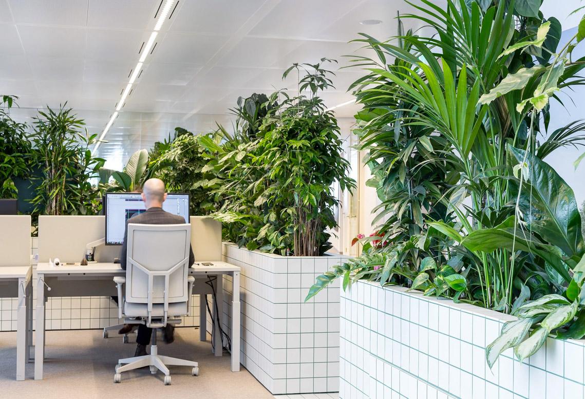 Khám phá mười nội thất văn phòng không gian xanh - 6