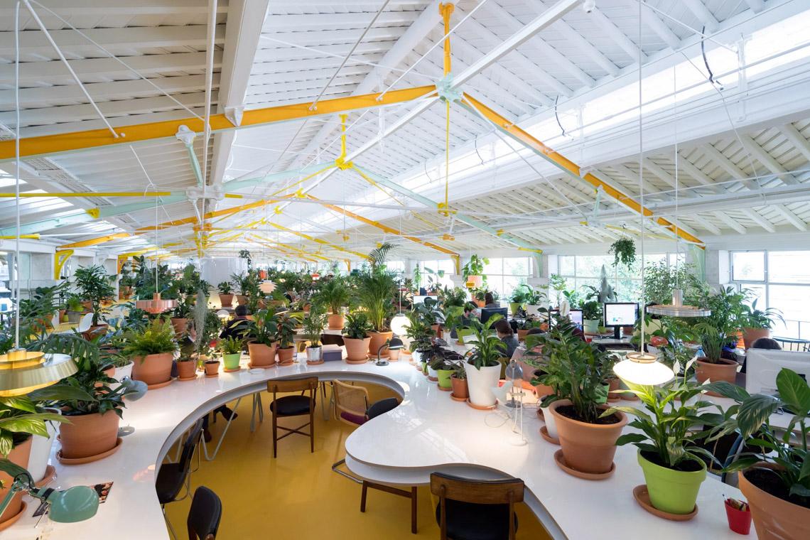 Khám phá mười nội thất văn phòng không gian xanh - 7