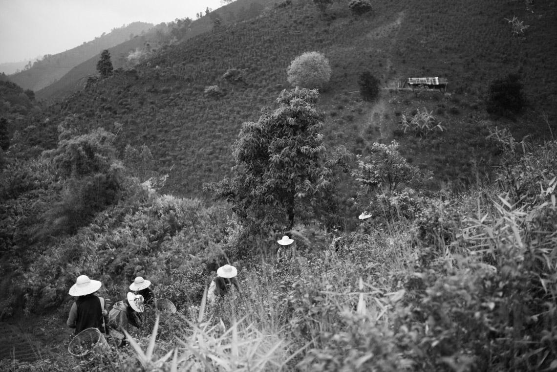 Myanmar in monochrome của nhiếp ảnh gia Patrick Hamilton - 10