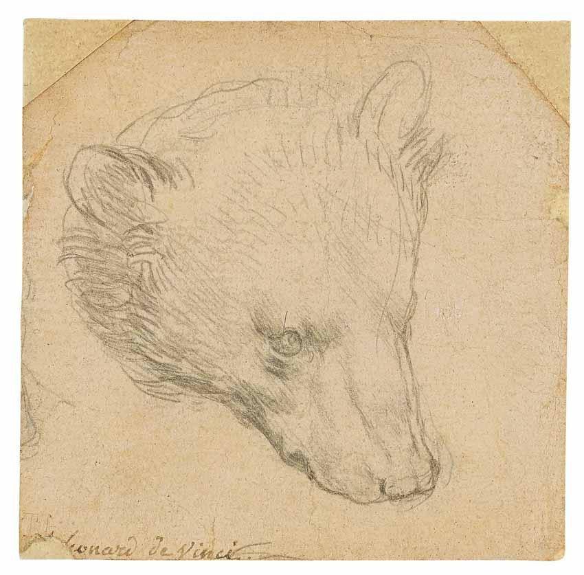 """Bức vẽ """"Đầu Gấu"""" 7x7cm của danh họa Leonardo da Vinci vừa được bán với mức giá kỷ lục 12,2 triệu USD - 1"""
