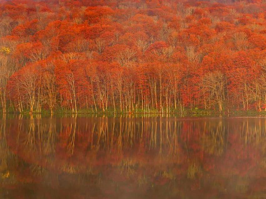 Hồ Towada, Aomori