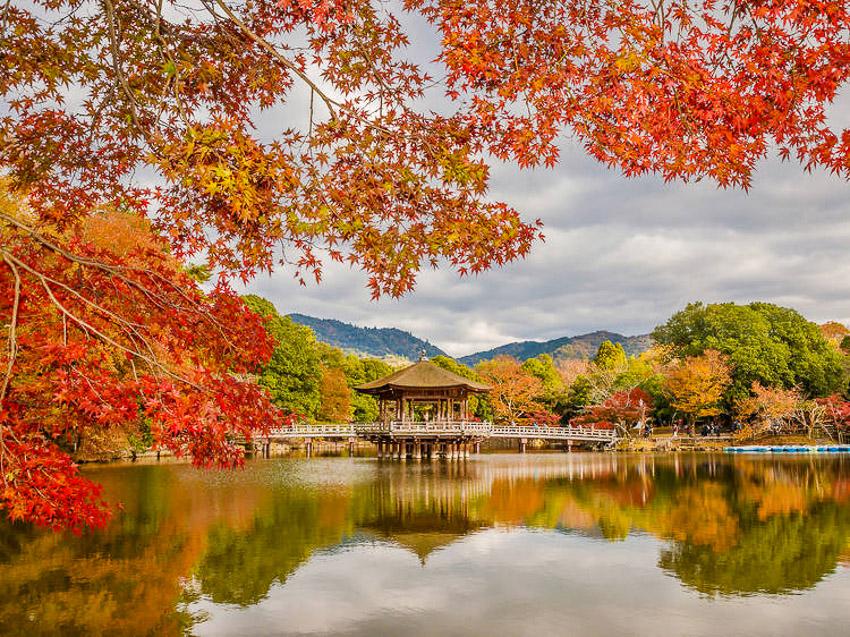 Công viên Nara, Nara