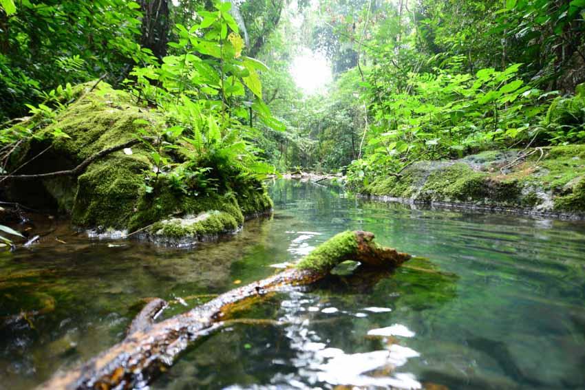 Ghé Belize, 'viên ngọc của vùng Trung Mỹ' - 4