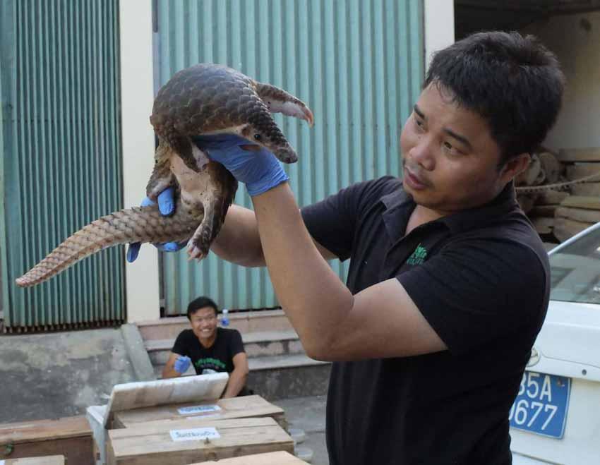 'Nobel xanh' Goldman 2021 Nguyễn Văn Thái: Nặng lòng với bảo tồn thiên nhiên - 1